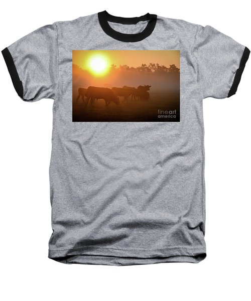 Cows In The Sunrise Mist Baseball T-Shirt