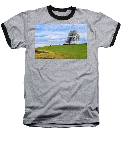 Cows On A Spring Hill Baseball T-Shirt by James Eddy