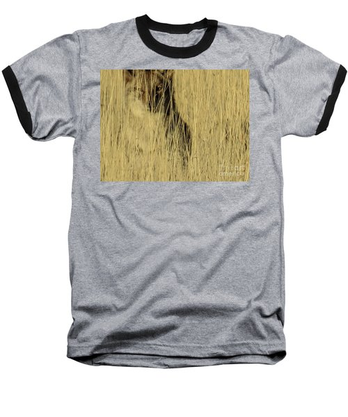 Coyote 3 Baseball T-Shirt