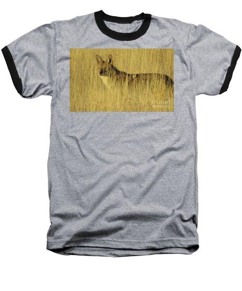 Coyote 4 Baseball T-Shirt