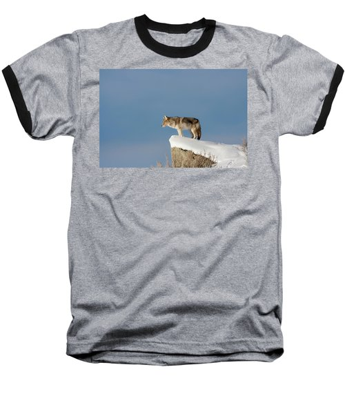 Coyote At Overlook Baseball T-Shirt
