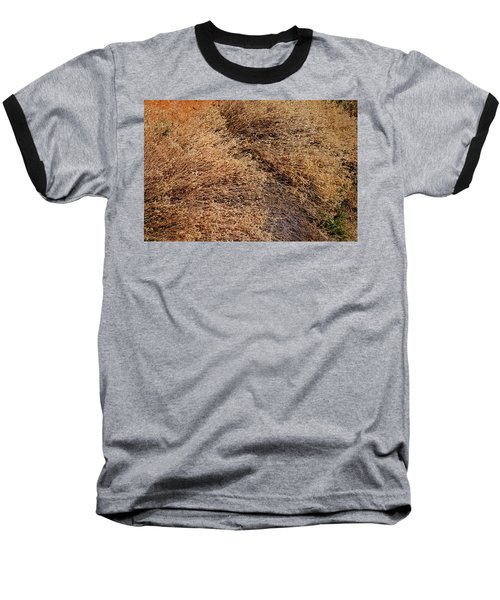 Coyote Brush Baseball T-Shirt