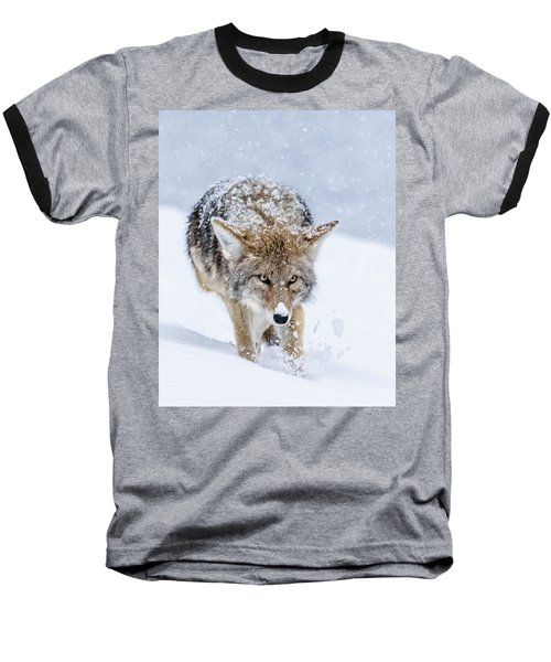 Coyote Coming Through Baseball T-Shirt