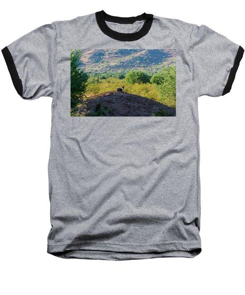 Coyote Hill Baseball T-Shirt