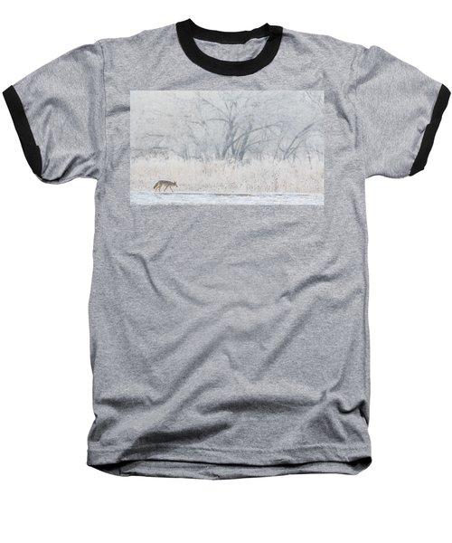Coyote On The Hunt Baseball T-Shirt
