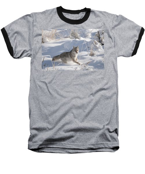 Coyote On The Move Baseball T-Shirt