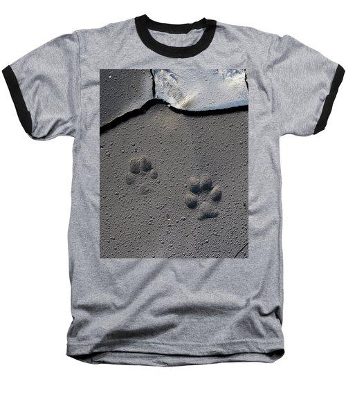 Coyote Tracks Baseball T-Shirt