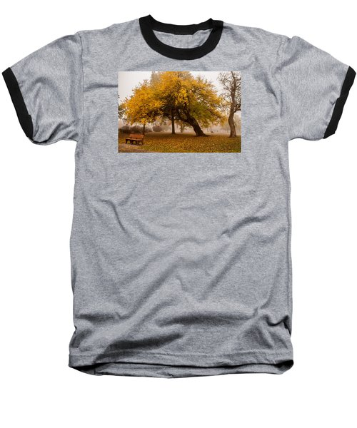Cozy Baseball T-Shirt by Joe Scott