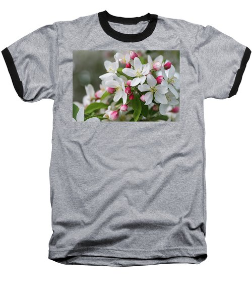 Crabapple Blossoms 12 - Baseball T-Shirt