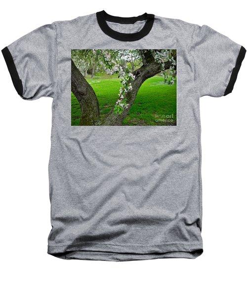Crabapple Blossoms On A Rainy Spring Day Baseball T-Shirt by Byron Varvarigos