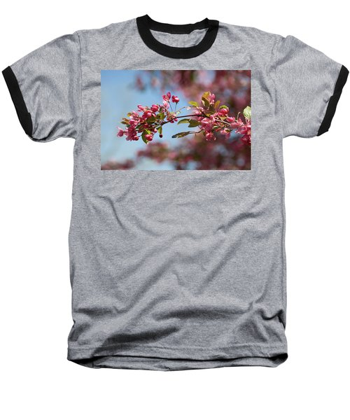 Crabapple In Spring Section 1 Of 4 Baseball T-Shirt