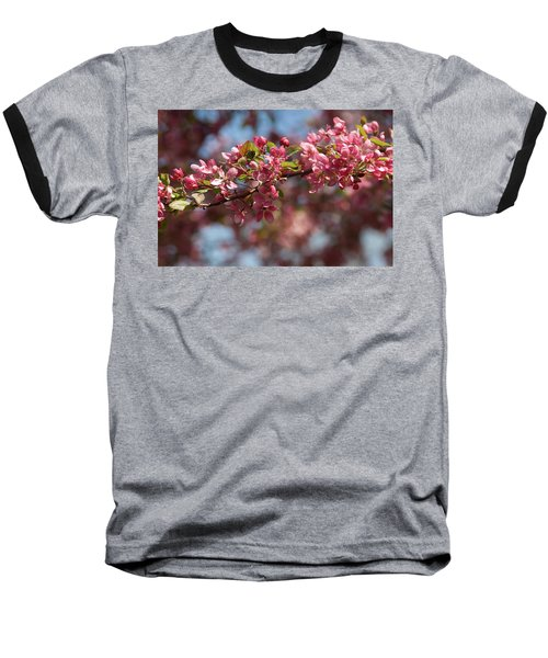 Crabapple In Spring Section 2 Of 4 Baseball T-Shirt