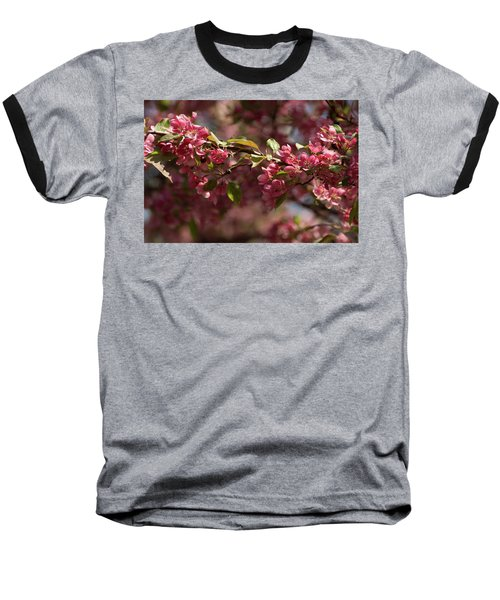 Crabapple In Spring Section 3 Of 4 Baseball T-Shirt