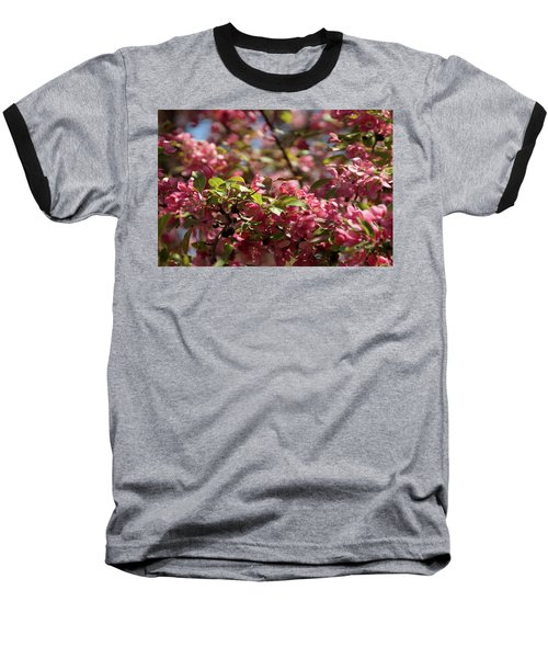 Crabapple In Spring Section 4 Of 4 Baseball T-Shirt