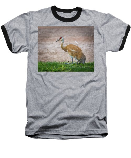 Baseball T-Shirt featuring the photograph Crane Down by Bill Pevlor