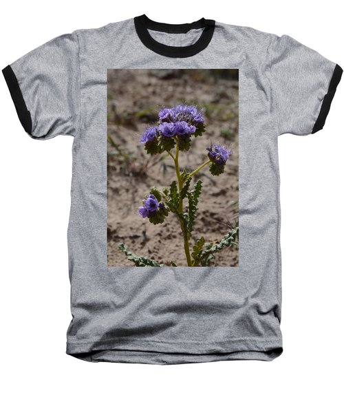 Crenulate Phacelia Flower Baseball T-Shirt