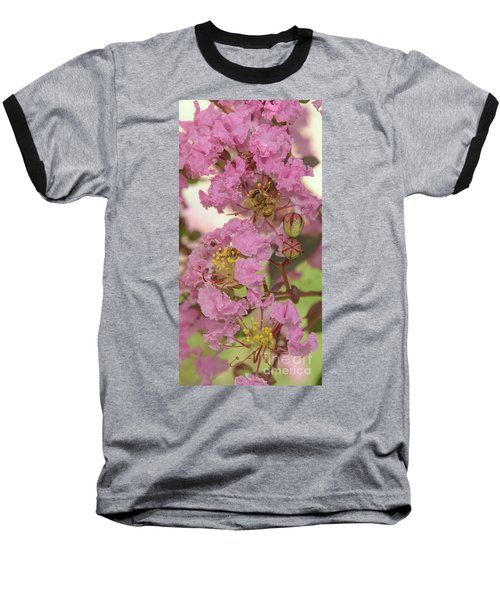 Crepe Myrtle And Bee Baseball T-Shirt by Olga Hamilton