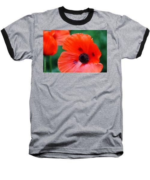 Crepe Paper Petals Baseball T-Shirt