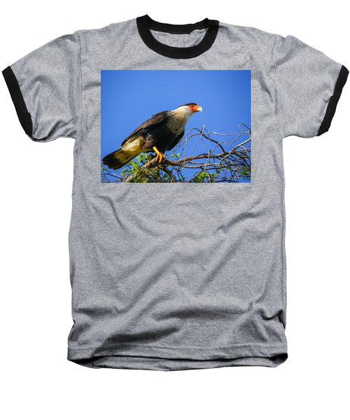 Crested Caracar Baseball T-Shirt