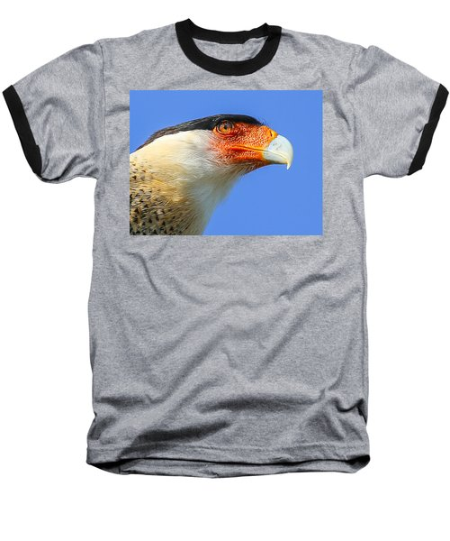 Crested Caracara Face Baseball T-Shirt
