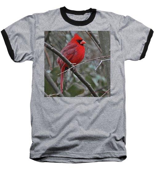Crimson Cardinal Baseball T-Shirt