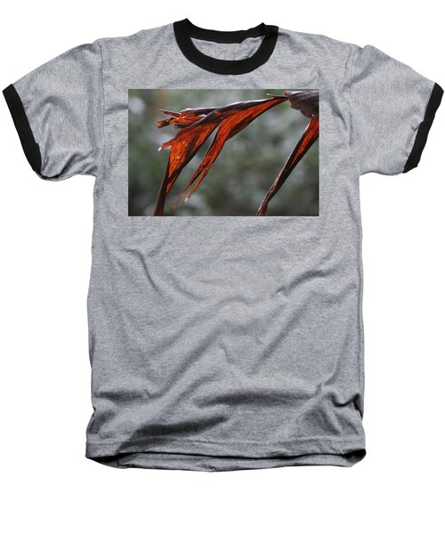Crimson Leaf In The Amazon Rainforest Baseball T-Shirt