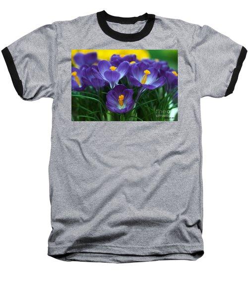Crocus Baseball T-Shirt