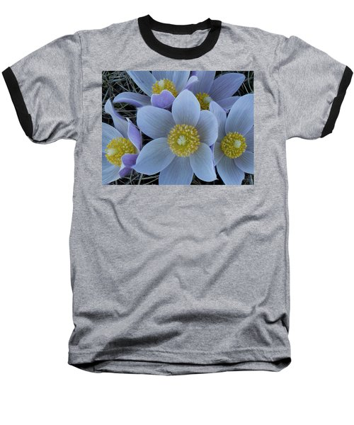 Crocus Blossoms Baseball T-Shirt