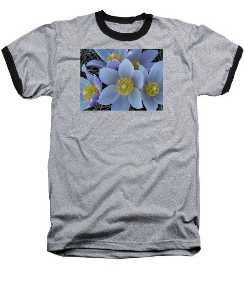 Crocus Blossoms Baseball T-Shirt