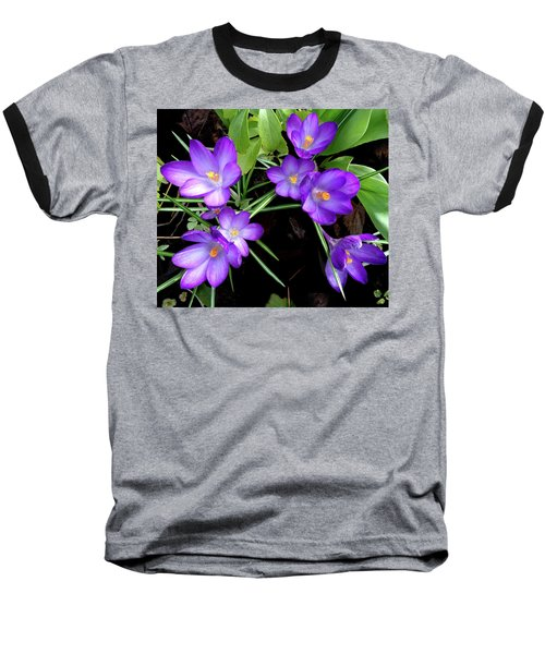 Crocus First To Bloom Baseball T-Shirt