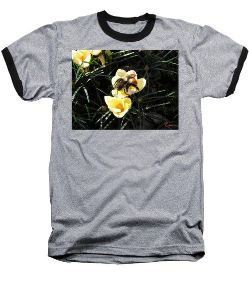 Crocus Gold Baseball T-Shirt