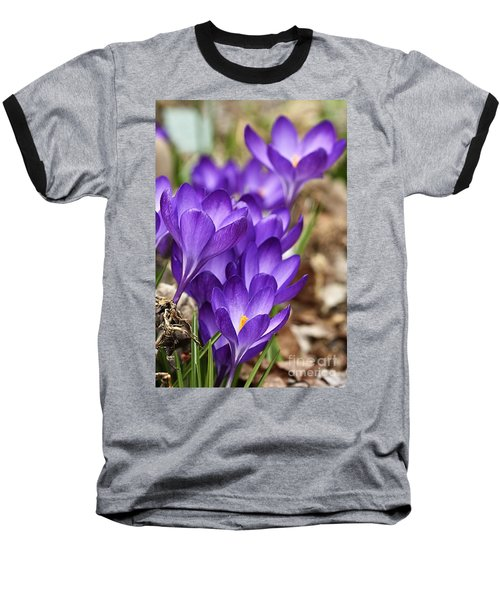 Baseball T-Shirt featuring the photograph Crocuses by Larry Ricker