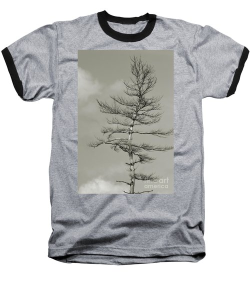 Crooked Tree Baseball T-Shirt