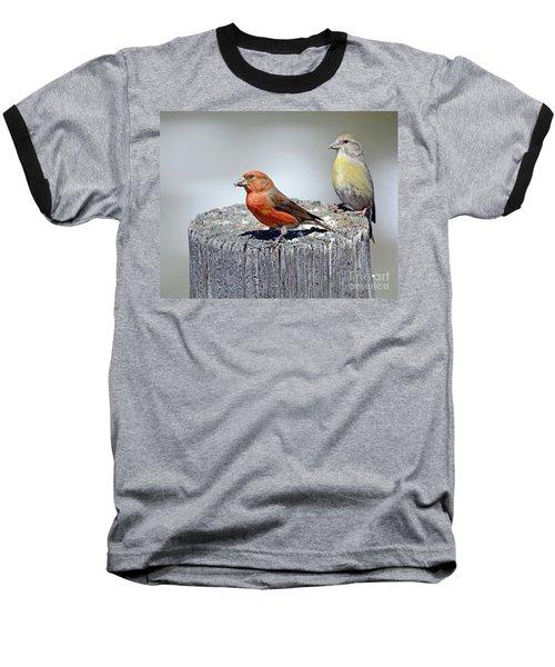 Crossbills Baseball T-Shirt