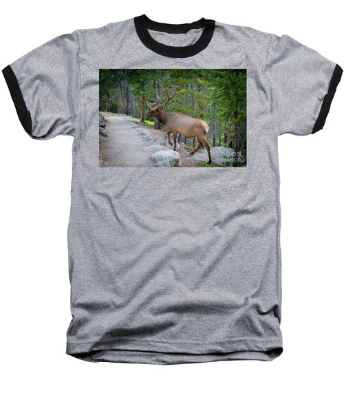 Crossing Paths With An Elk Baseball T-Shirt