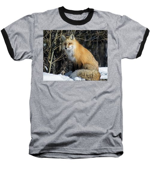 Crossroads With A Red Fox Baseball T-Shirt