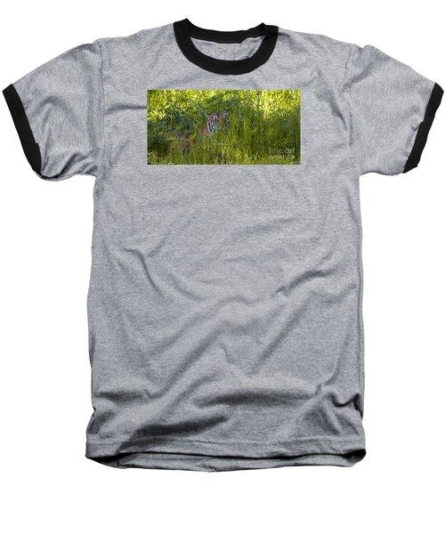 Crouching Tiger Baseball T-Shirt