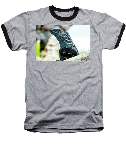 Baseball T-Shirt featuring the photograph Ctenosaura by David Morefield