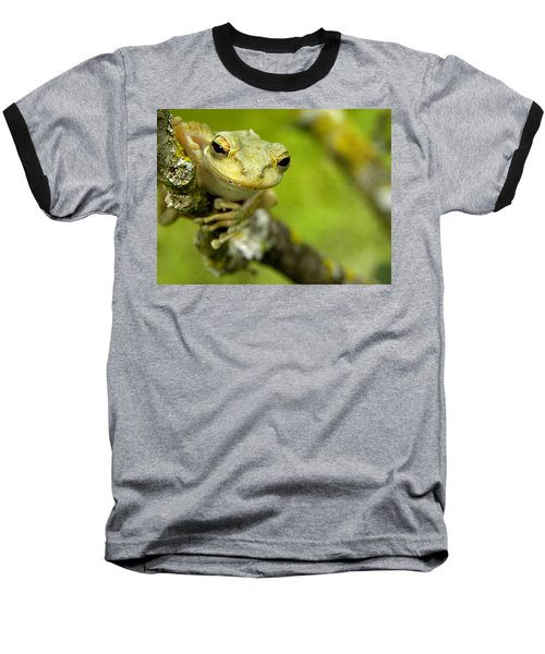 Cuban Tree Frog 000 Baseball T-Shirt