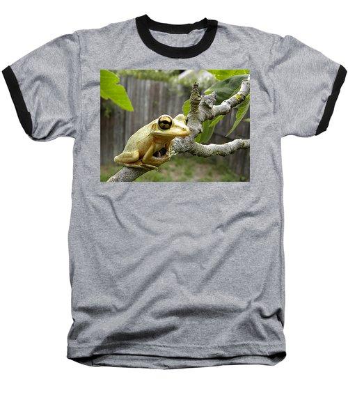 Cuban Tree Frog 001 Baseball T-Shirt by Chris Mercer