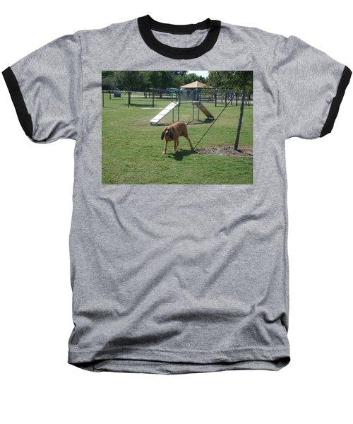 Cujo At The Park Baseball T-Shirt by Val Oconnor