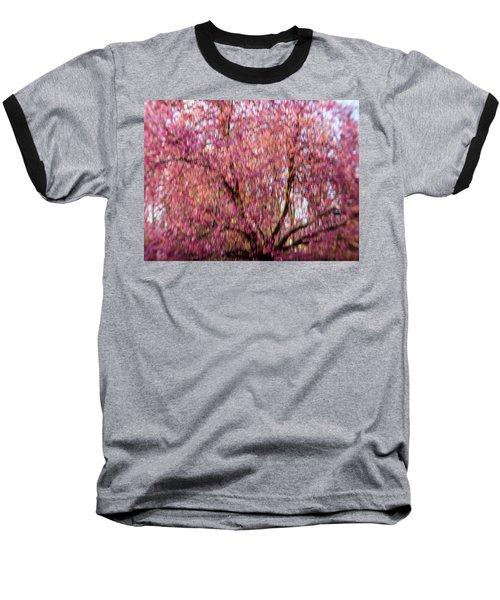 Columnar Sargent Cherry 2 Baseball T-Shirt by Bernhart Hochleitner