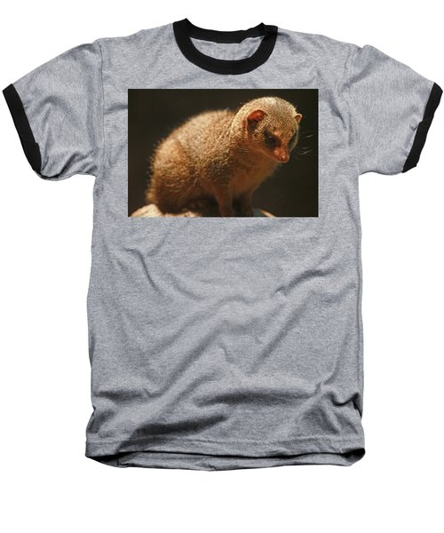 Baseball T-Shirt featuring the photograph Curiosity At Rest by Laddie Halupa