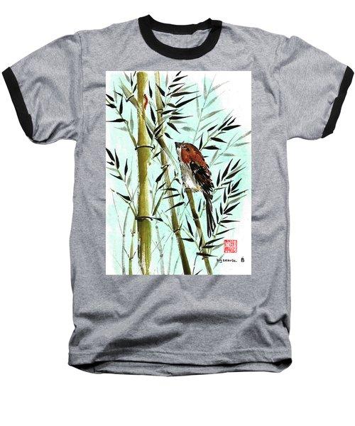 Curiosity Baseball T-Shirt
