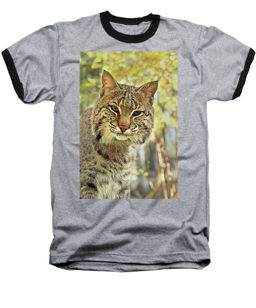 Baseball T-Shirt featuring the photograph Curiosity The Bobcat by Jessica Brawley