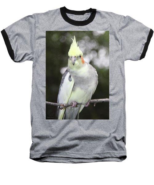Curious Cockatiel Baseball T-Shirt by Inspirational Photo Creations Audrey Woods