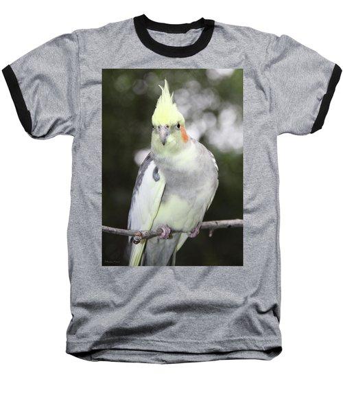 Curious Cockatiel Baseball T-Shirt