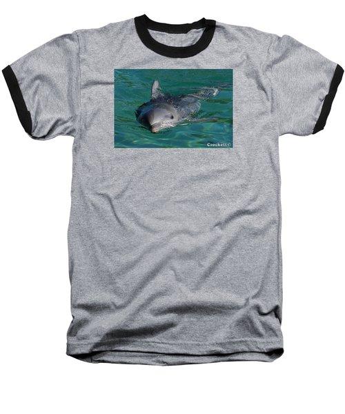 Curious Dolphin Baseball T-Shirt by Gary Crockett