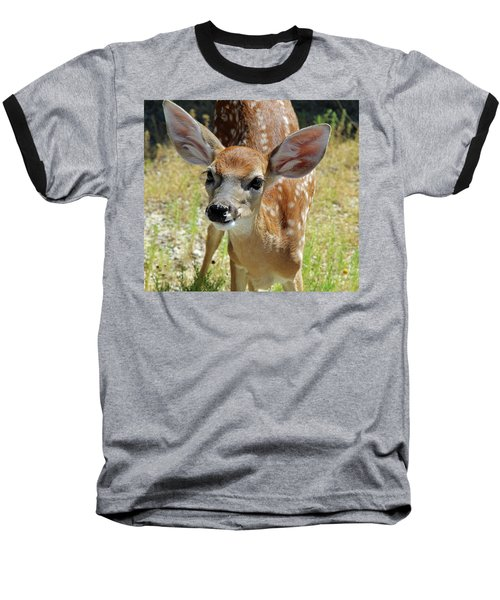 Curious Fawn Baseball T-Shirt by Inspirational Photo Creations Audrey Woods