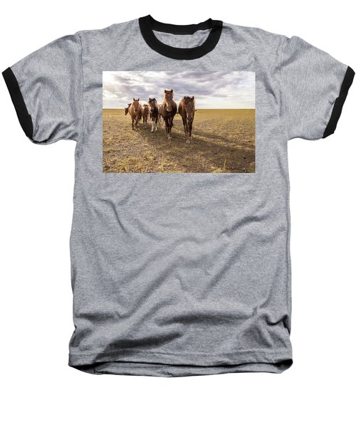 Baseball T-Shirt featuring the photograph Curious Horses by Hitendra SINKAR